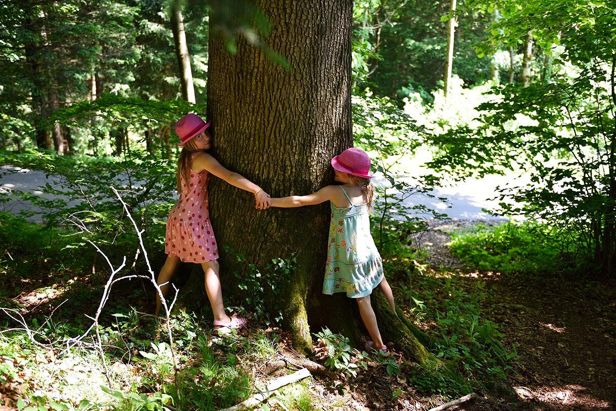 abbracciare-gli-alberi-in-trentino-comano-dolomiti.jpg